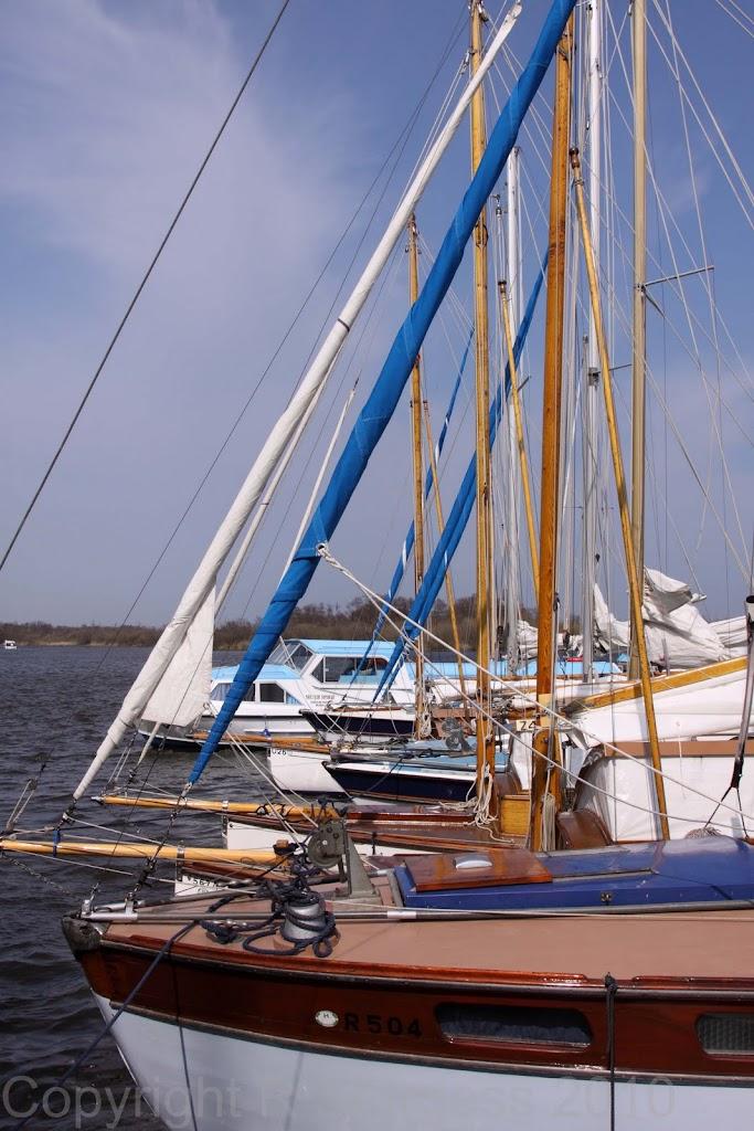 2010 Cruise - Bitternes0045.jpg