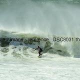 _DSC8031.thumb.jpg