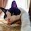 Lou Adesso's profile photo