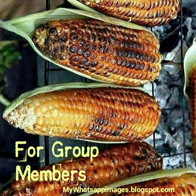 For Group Members