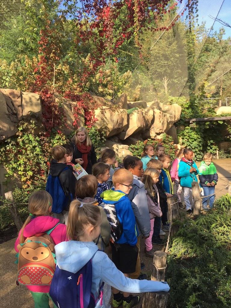 De Knetters gaan naar de Zoo van Antwerpen - IMG_7848.JPG