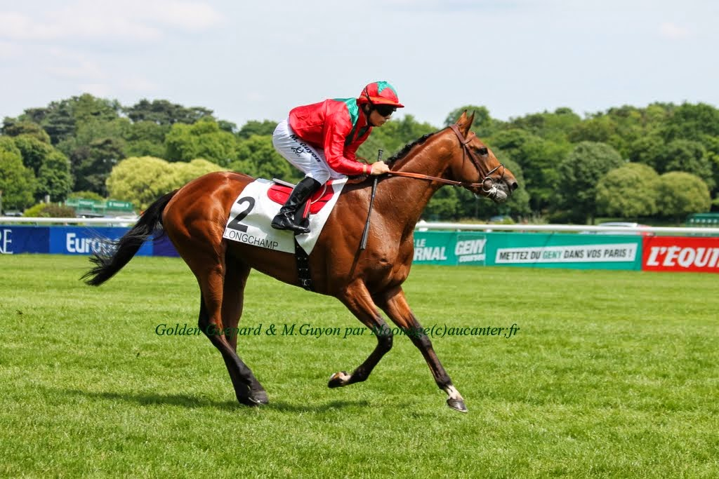 Photos Longchamp 25-05-2014 IMG_1108