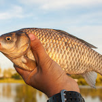 20160611_Fishing_Pryvitiv_027.jpg