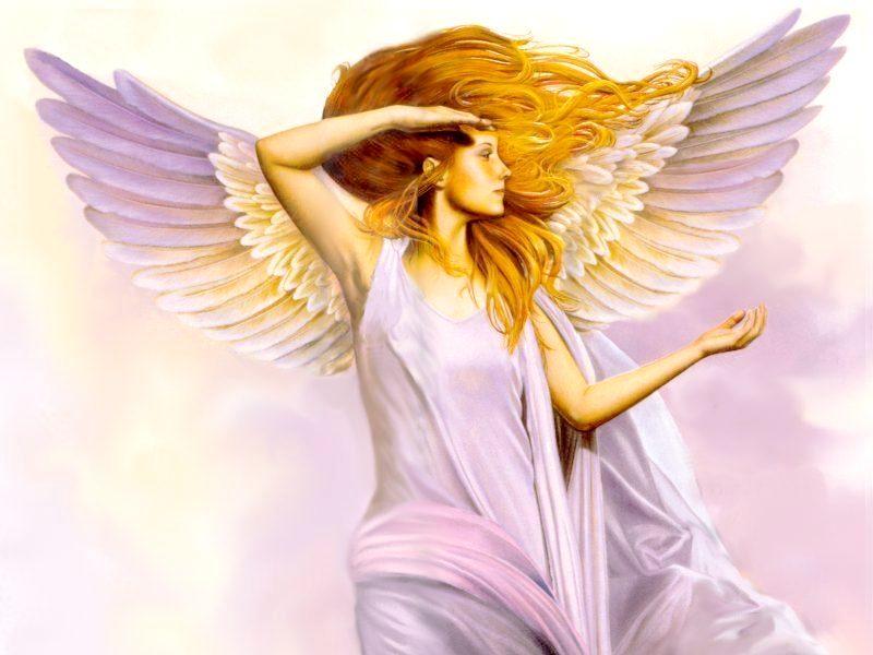 Rose Angel, Angels 1