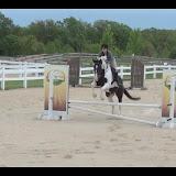 IDCTA Horse Show - May 12, 2012