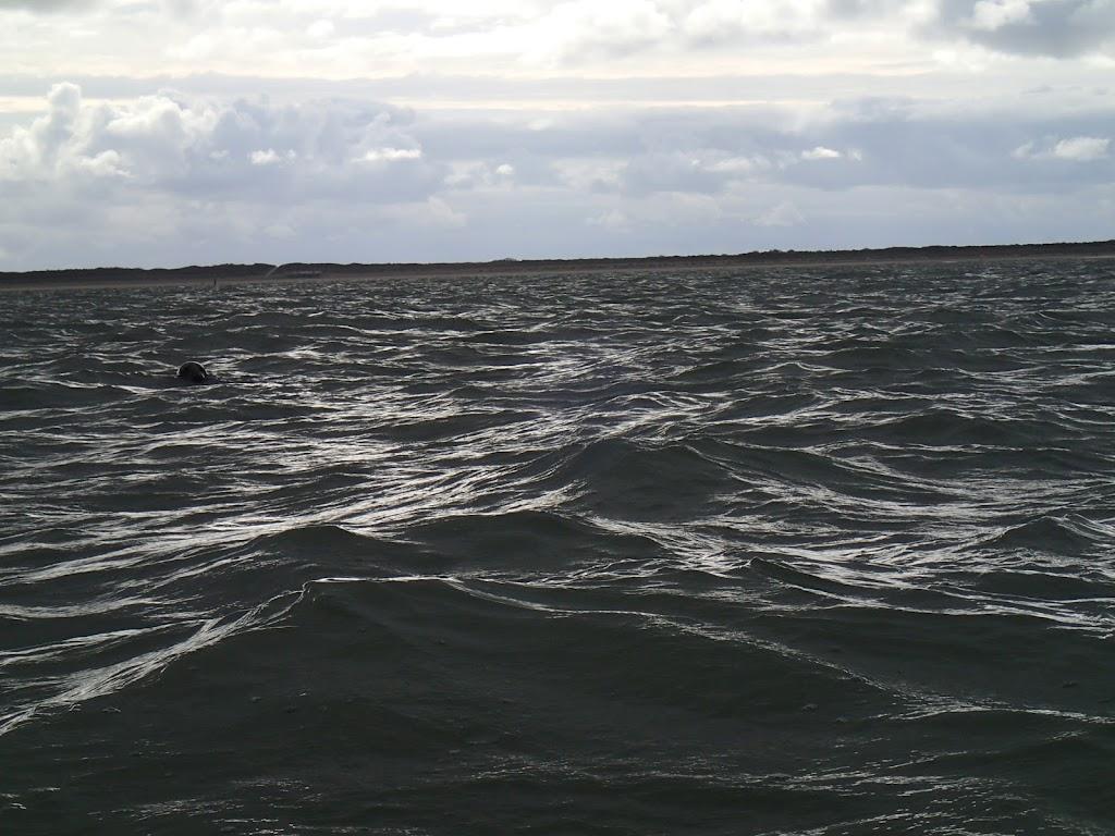 Kano Rijnland 2012 Zeekajakken Zeeland - 20121006%2BZeekajakken%2B%252827%2529.JPG