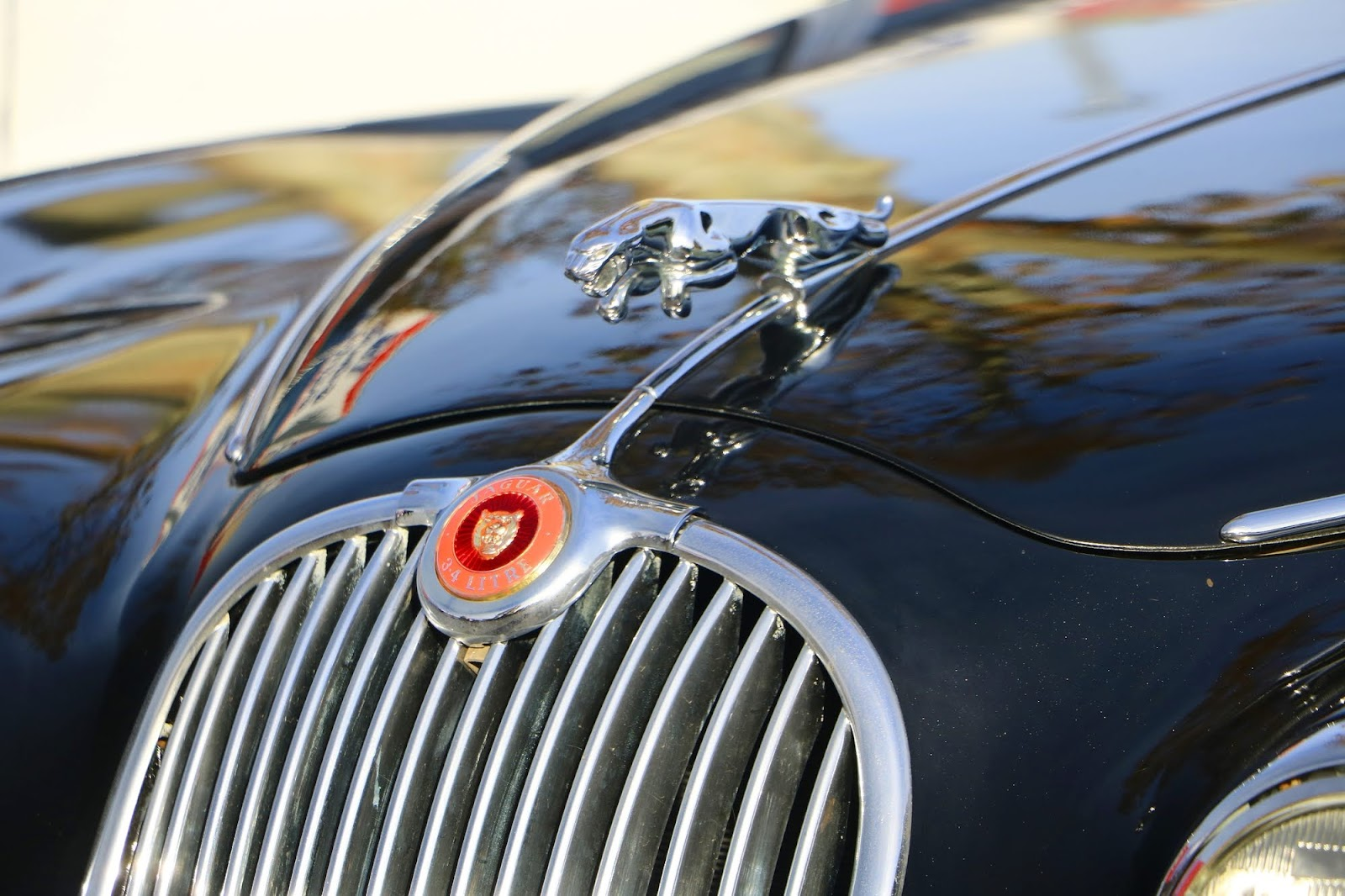 _Detail - Jaguar 3.4 Mark 2 Grill.jpg