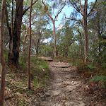 Birrawana Track steps (117025)