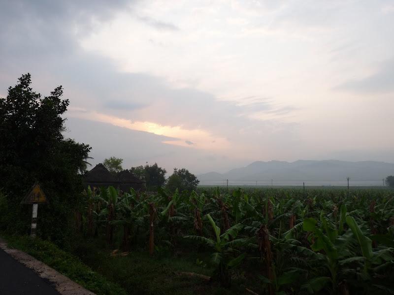 Chine . Yunnan..Galamba, Menglian Album A - Picture%2B238.jpg