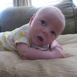 Meet Marshall! - IMG_0459.JPG