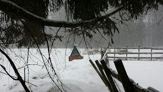 Hen house and fence posts in the snow