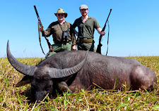 Buffalo hunting with double rifles... double the fun!! The Kheyfits gentlemen have done it again!