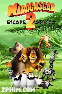 Madagascar 2: Tẩu Thoát Đến Châu Phi - Madagascar: Escape 2 Africa (2008) Poster