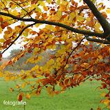 Herfst 2013 - Herfst_2013_070.jpg
