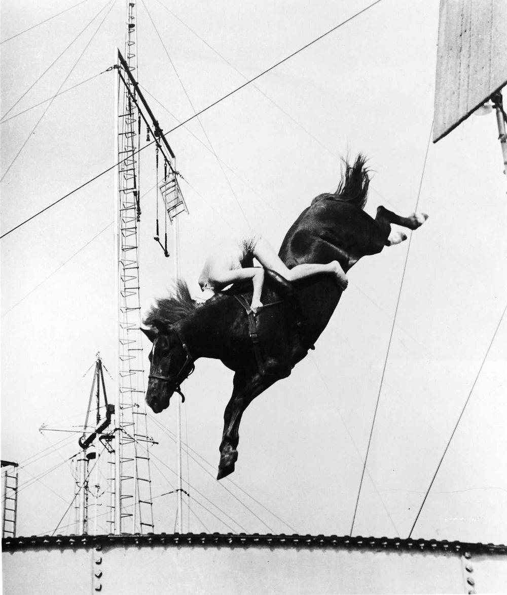 diving-horses-10