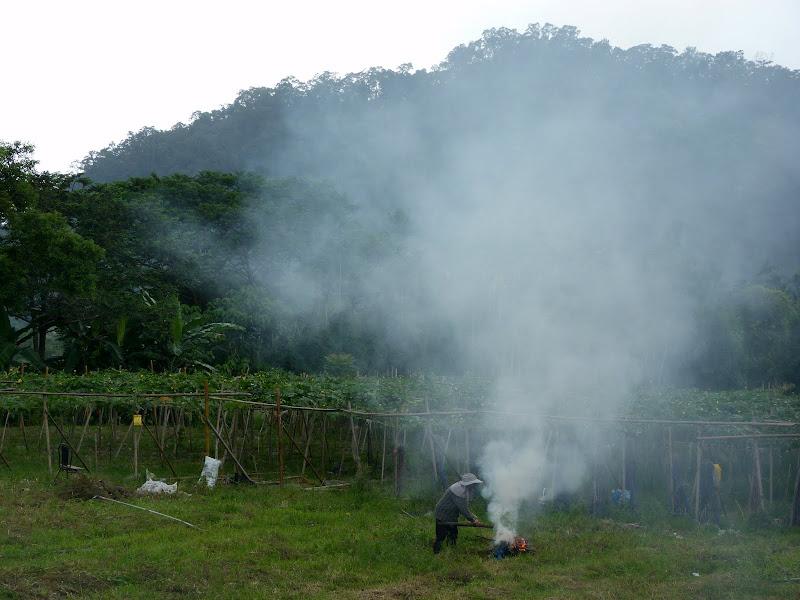 Puli  en passant , entre autres, par les villages de l ethnie Bunum de Loloko et Dili. J 10 - P1170167.JPG