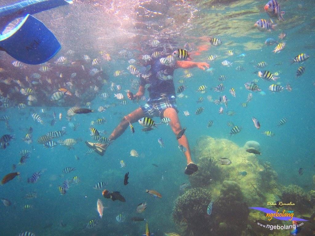 pulau harapan 8-9 nov 2014 diro 29