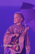 Han Balk Voorster dansdag 2015 middag-2232.jpg
