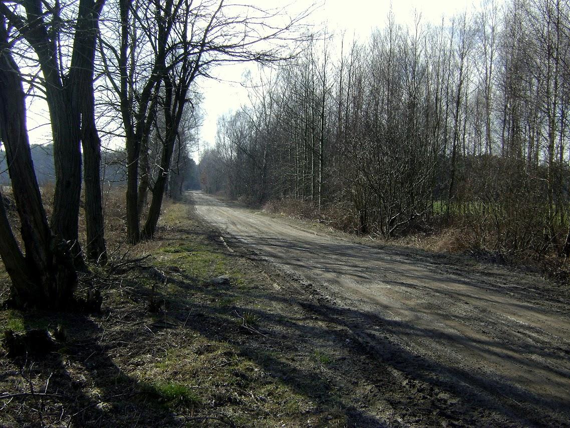 Las Pobłociszewski