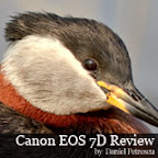 Canon EOS 7D Field Test and Review