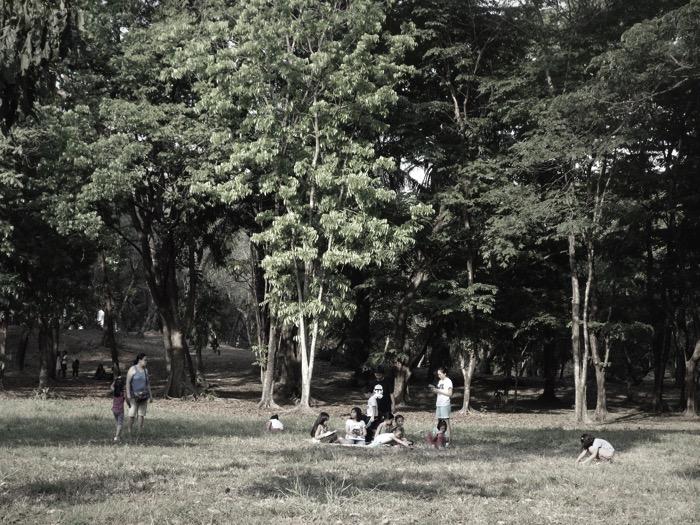 DSC02789 Fotor