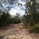 Heading through the bush (120826)