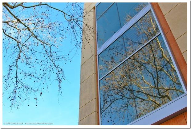 160130_UCD_campus_016