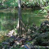 04-04-12 Hillsborough River State Park - IMGP9696.JPG