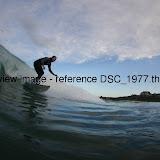 DSC_1977.thumb.jpg