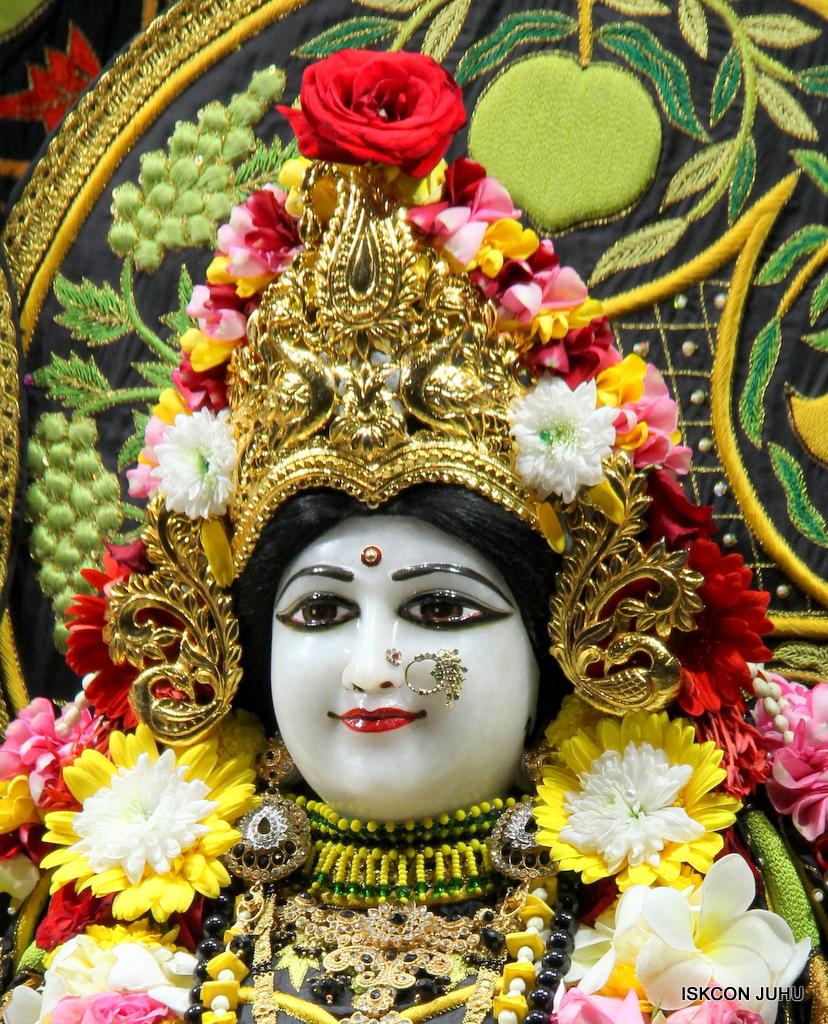 ISKCON Juhu Sringar Deity Darshan on 19th Nov 2016 (21)