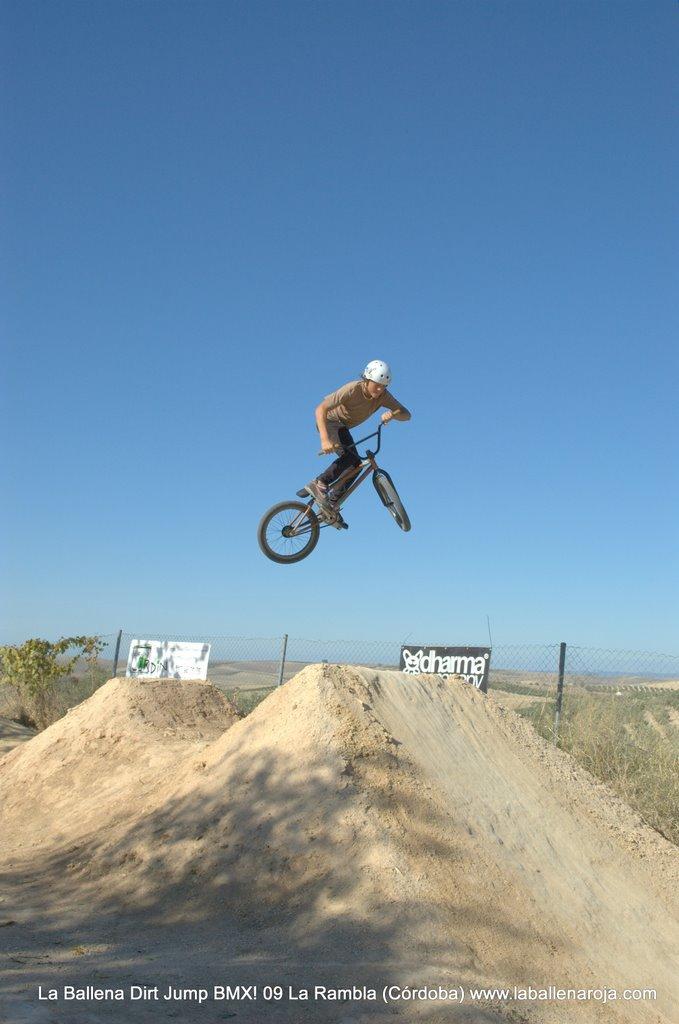 Ballena Dirt Jump BMX 2009 - BMX_09_0042.jpg