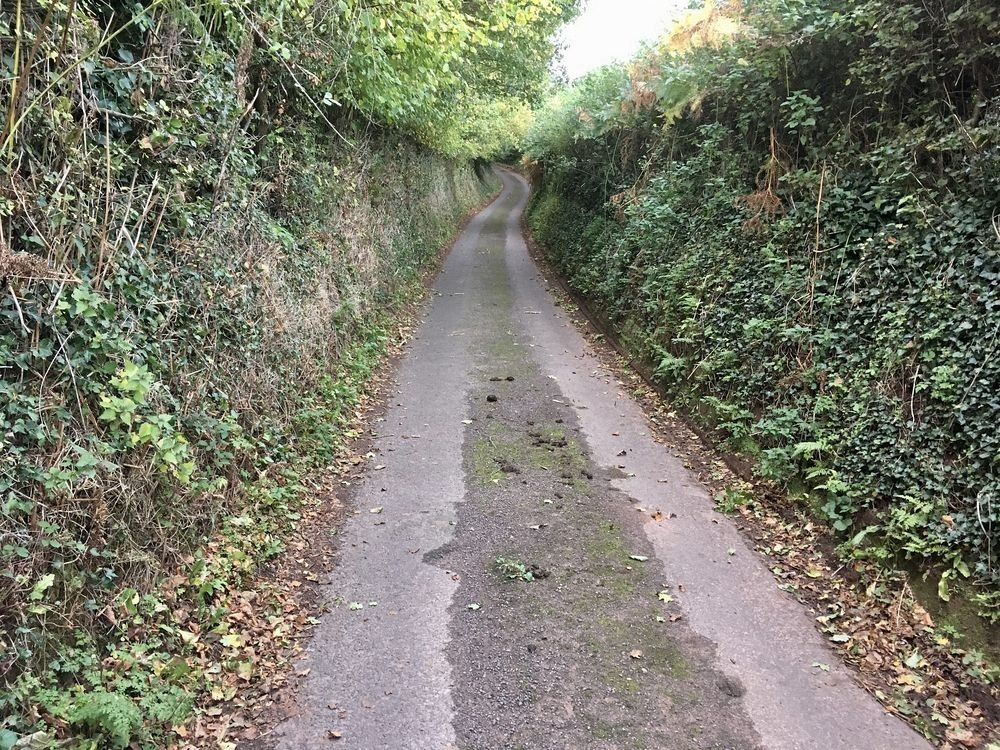 sunken-lane-11