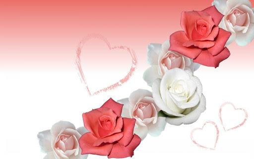 flower-rose-wallpaper.jpg