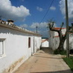 tn_portugal2010_454.jpg