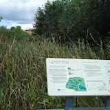 Табличка на мостике, где показано что болото питают 3 протока