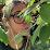 Alejandra Gutierrez del Angel's profile photo