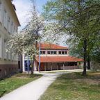 Fruehling 2009