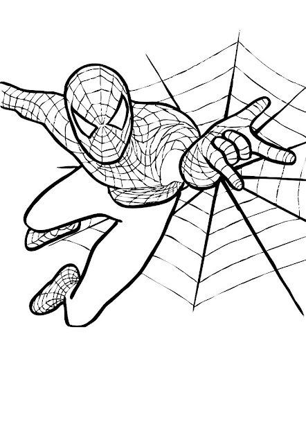 Spiderman Color Pages Free Printable Spiderman Coloring Pages For Kids Free  Online