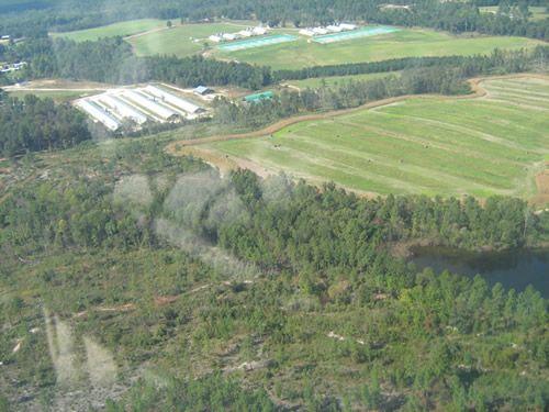 Aerial Shots Of Anderson Creek Hunting Preserve - tnIMG_0399.jpg