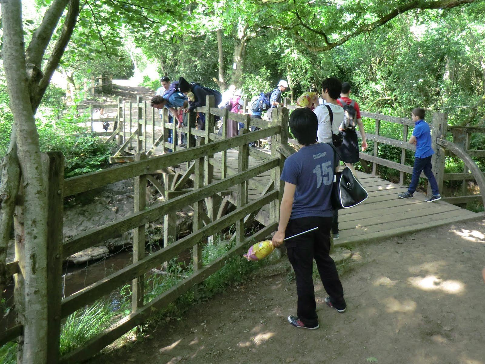 CIMG7324 Pooh Bridge, Ashdown Forest