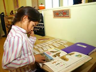 Léo checks work with dictionary