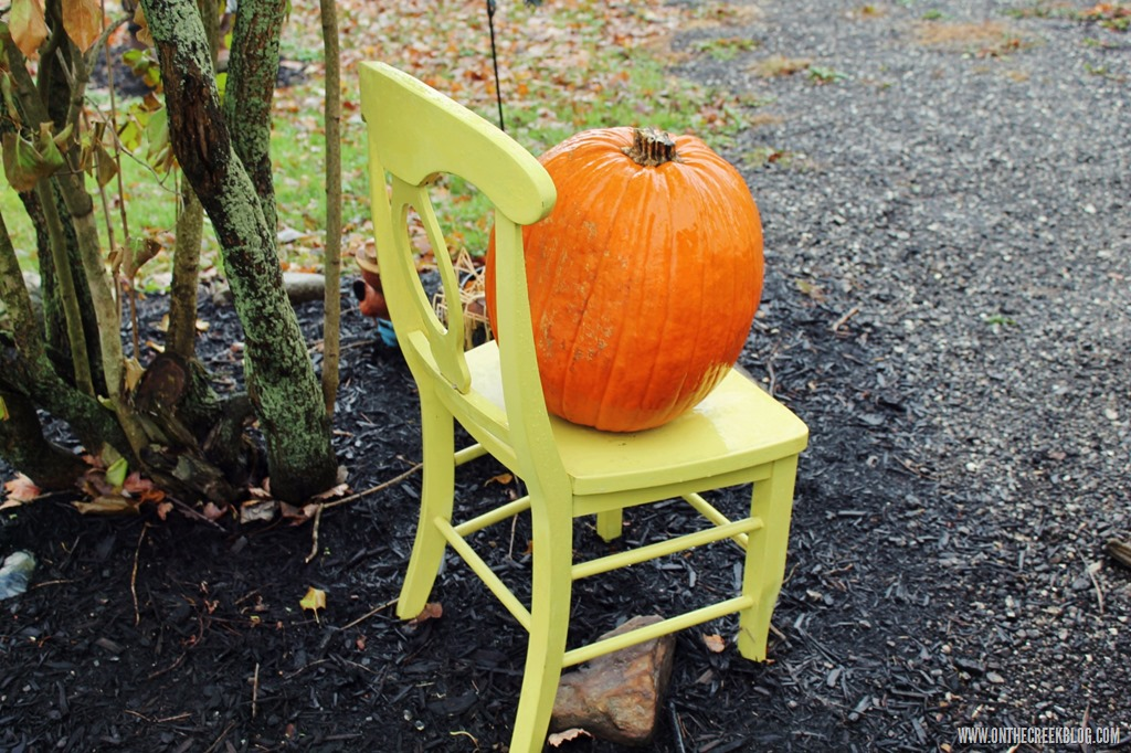 [pumpkin9%5B10%5D]