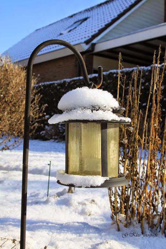 Winter - Winter-055.jpg