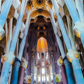 La Sagrada Familia by Jordan  Richardson - Buildings & Architecture Places of Worship ( gaudi, color, beautiful, churches, architecture, travel, barcelona, spain )