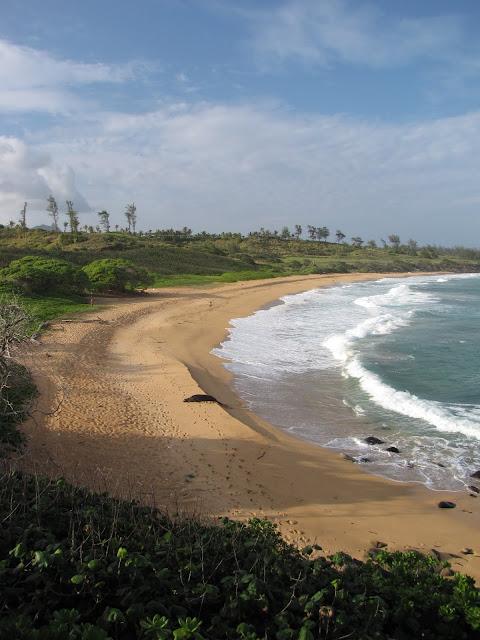 2012 - IMG_9097_Donkey_Beach.JPG