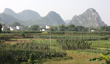 Photo: Day 208 - Limestone Pinnacles in SW Guangdong Province