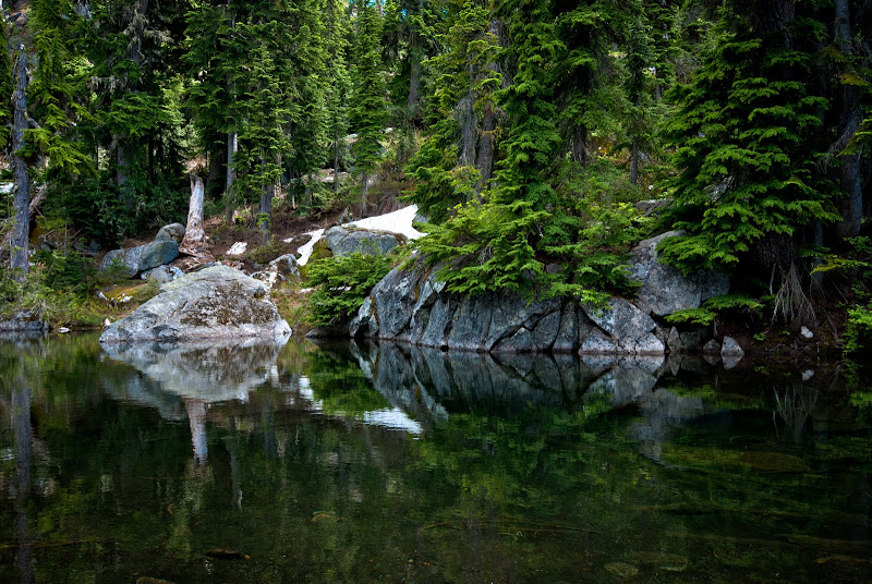 Alpine Lakes Wilderness: Tuck Lake trail..