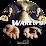 Guyonnet Loic (WakeUp Neo)'s profile photo