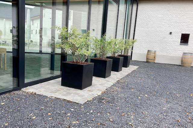 Grote plantenbakken prijzen voor buiten kopen of huren groot goedkoop hangend of tegen muur met bloemen palmboom op terras of tegen wand in de winkel in cortenstaal pvc kunststof zink beton staal