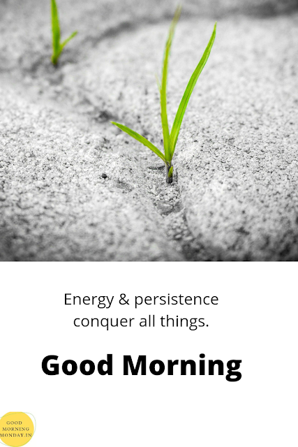 persistence quotes,a good morning,Good Morning Quotes,good morning images,thoughtful good morning message,good morning HD images,HD images,for student,